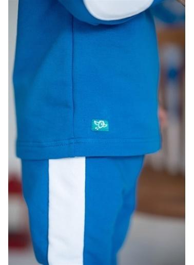 Nila Kids Blue Blossom Organik Erkek Bebek Sweatshirt Mavi
